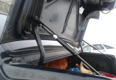 Амортизатор, демпфер, упор двери багажника — советы по выбору, популярные модели